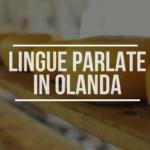 Che Lingua si Parla in Olanda?